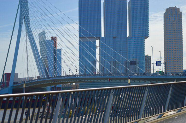 Dagprogramma   Typisch Rotterdam